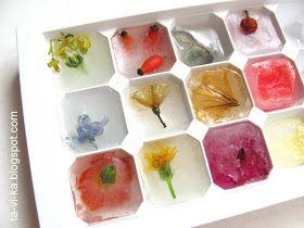 ледяной гербарий