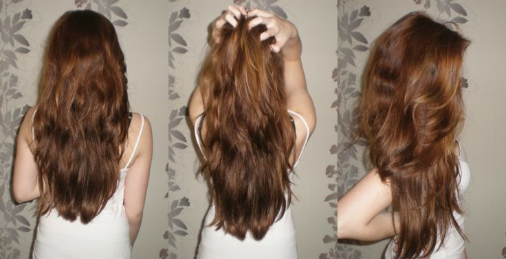 Haselnuss haarfarbe