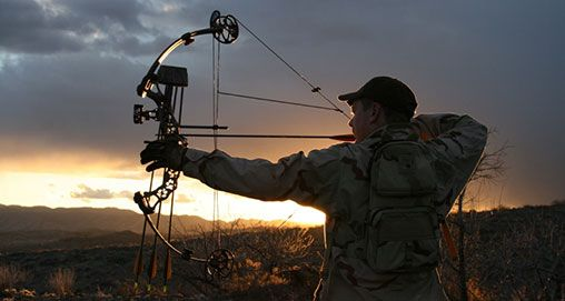 10 Do's and Don'ts for Better Bow Practice - American Hunter