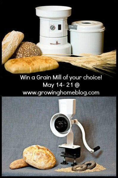 Growing Home: Grain-Mill Giveaway {and Homemaking Link-Up}!  I've entered to win!!!  Hoping you get a chance to try for it too!
