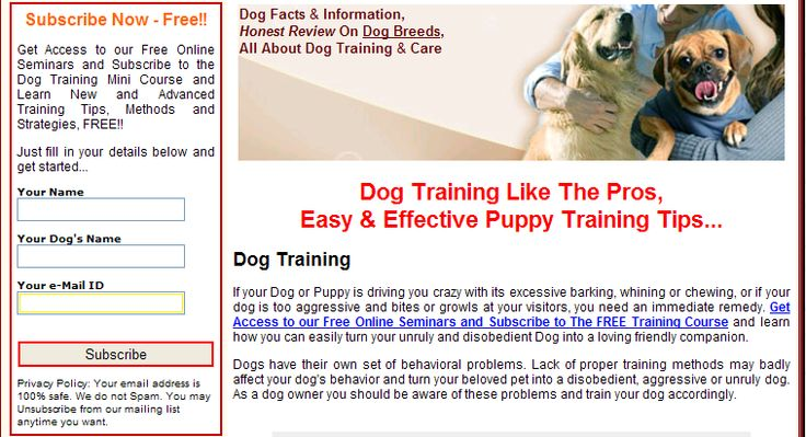Click http://petproductsonline.info/freedogtrainingminicourse To Get Access to our Free Online Seminars and Subscribe to the Dog Training Mini Course and Learn New and Advanced Training Tips, Methods and Strategies, FREE!!