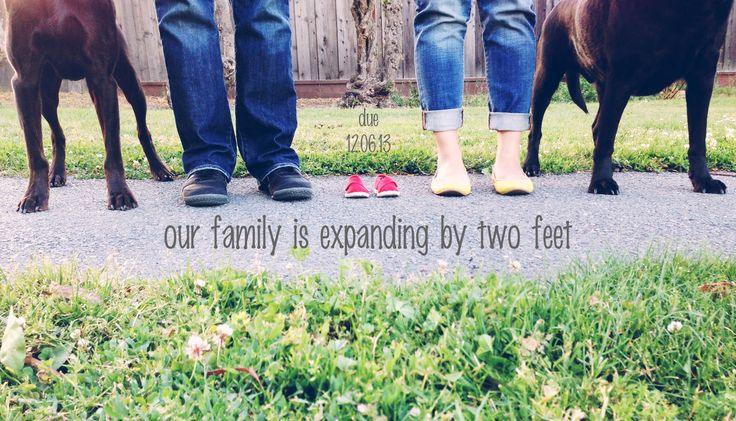 pregnancy reveal with dogs feet | pregnancy announcement with dog feet