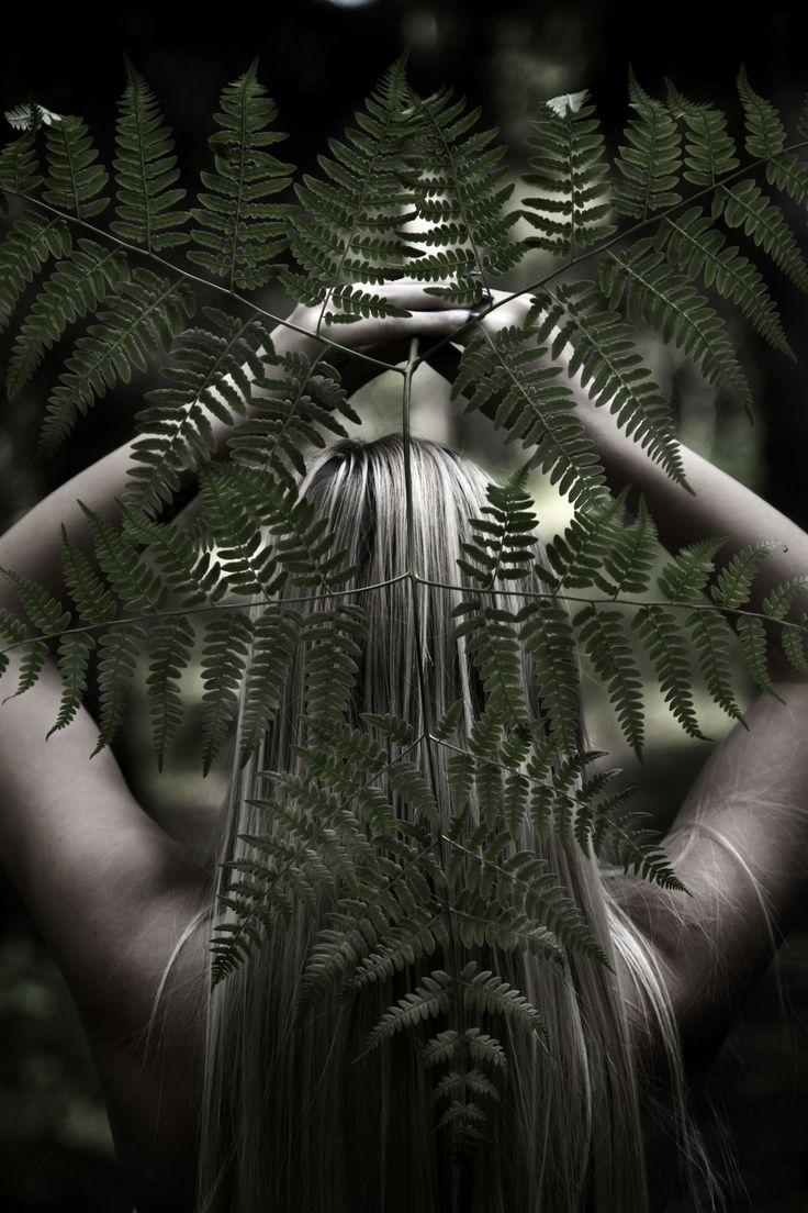 woodland_2 by Salla Vesa