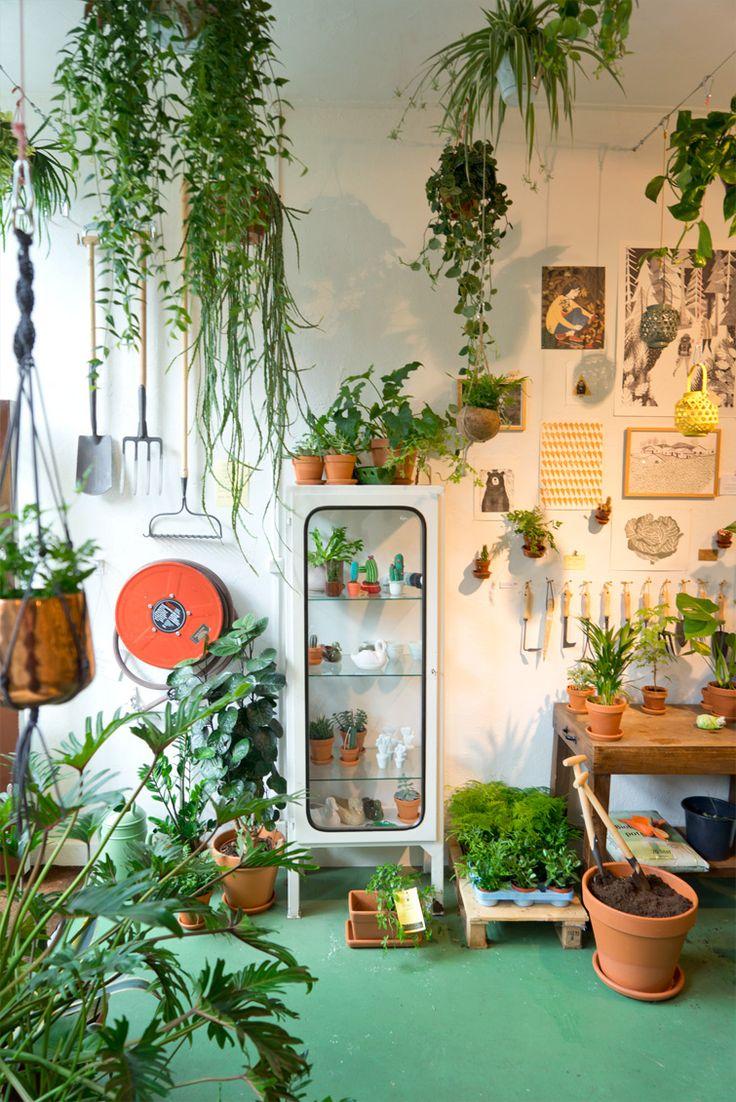 Encore des plantes vertes, et oui... elles deviennent envahissantes sur mon blog, mais que voulez-vous, je ne m'en lasse pas ! Et, j'accompagne le mouvement, car la tendance va vers le vert, la nature, le végétal... avec ce mouvement lancé par…