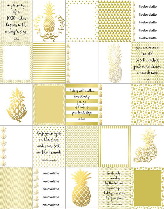 GOLD CHAMPAGNE PINEAPPLES for use with Erin par LiveLoveLatte