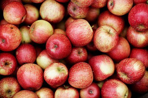 Love apple picking...