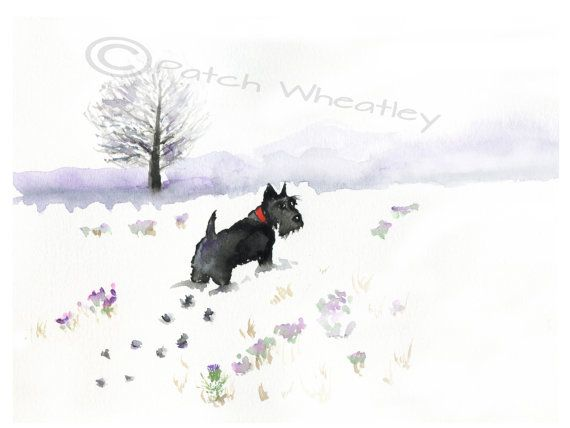 "Scottish Terrier Dog Art Print  ""Waiting for a friend"" by ArchyScottie"