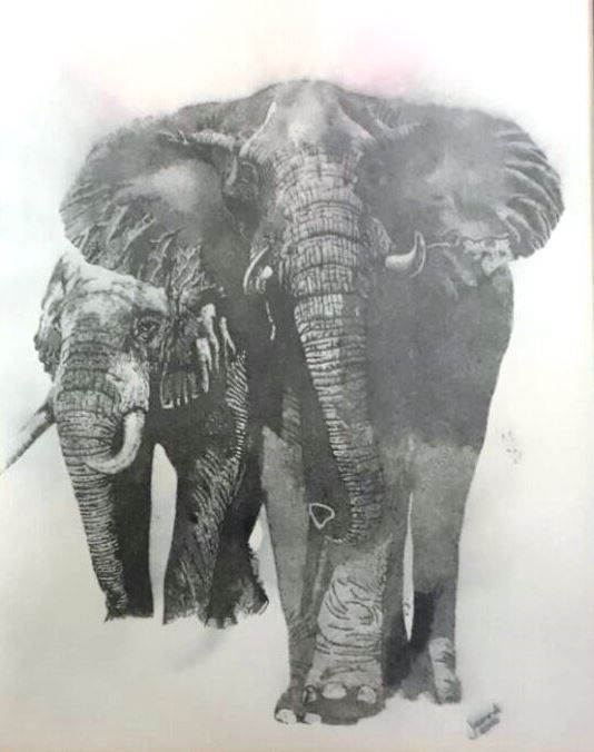 Elephant..... One of the African Big Five! Medium: Black Rotring Ink Pen Technique: Stippling Size: A3 Available!