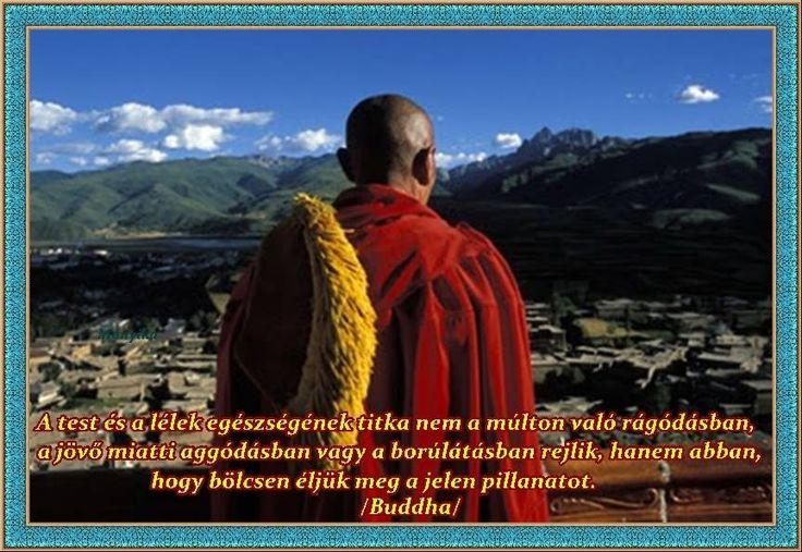 """""""A test és a lélek egészségének titka nem a múlton való rágódásban, a jövő miatti aggódásban vagy a borúlátásban rejlik, hanem abban, hogy bölcsen éljük meg a jelen pillanatot."""""""