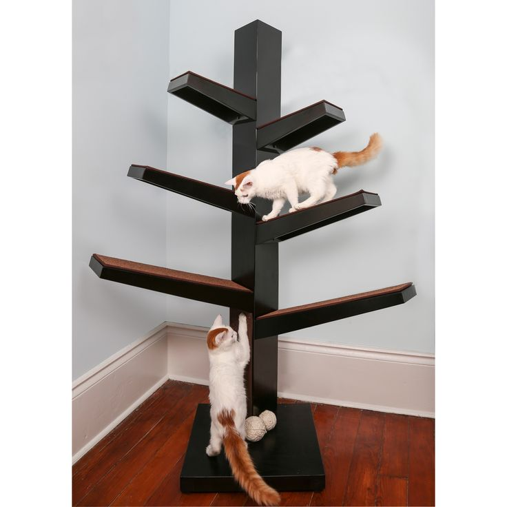 Popular You ull love the Catalpa Cat Tree at Wayfair Great Deals on