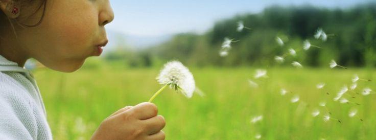 ¿Como prepararnos para perder las cosas que apreciamos y aun así, mantenernos en paz? http://bit.ly/19R4NF8