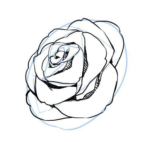 シンプルな記号に置き換えて描くのがコツ! 花の描き方講座|イラストの描き方  花びらの描き方 2/2    How to Draw Flowers in 3 Steps | Illustration Tutorial  Draw petals 2/2