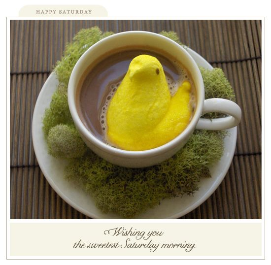 Will be doing this easter morning.... why not?!  Too cute!: Easter Peep, Peeps Candy, Good Morning Coffee, Peep Coffee, Easter Coffee, Coffeelovers Easter, Peeps Coffee, Easter Morning Too