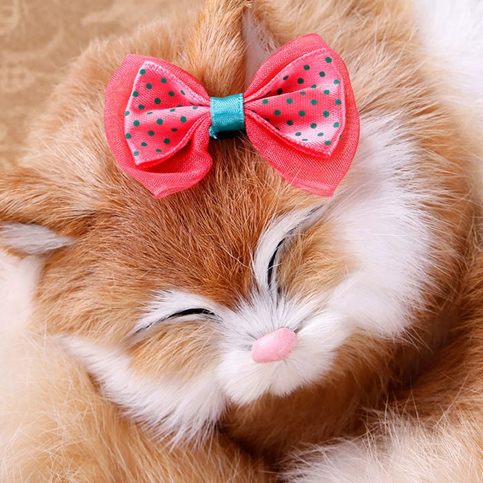 Ornaments Pet Accessories Fresh And Elegant Pet Hairpin Small Butterfly Knot Dog Hairpin Pet Accessories Online Pet Supplies Pets