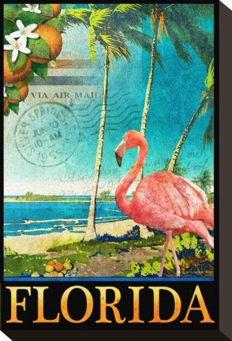 Flamingo Stretched Canvas Print