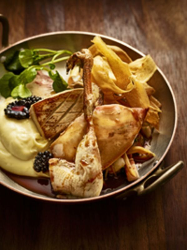 Pot Roast Teal recipe by professional chef Adam Byatt, Trinity Restaurant, Cambridge