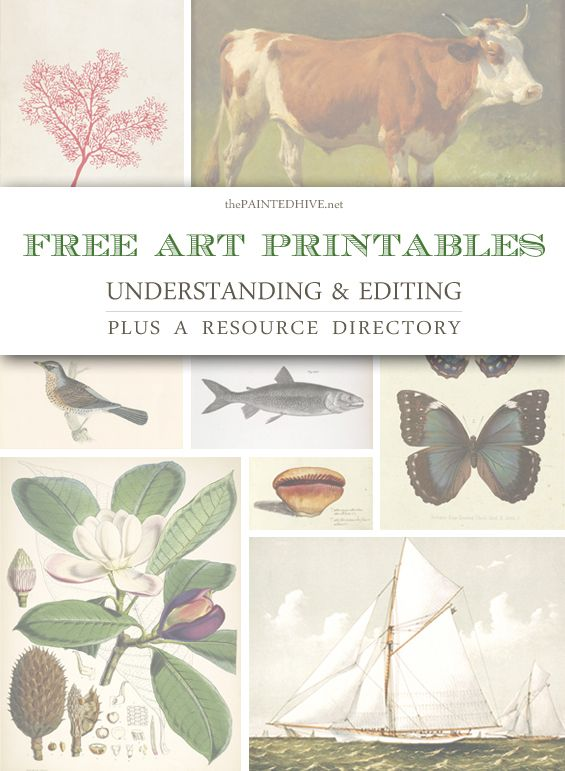 Free Art Printables: Understanding & Editing…plus a Resource Directory - The Painted Hive
