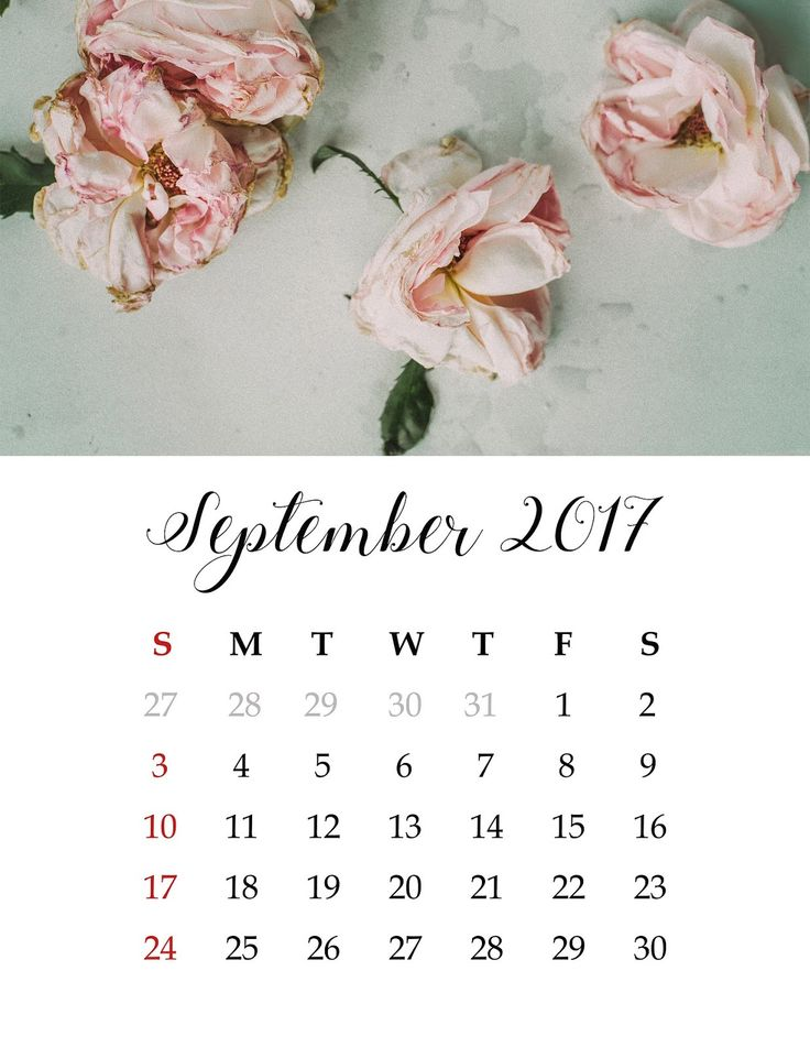 Marvelous Calendar, September, Wall Calendar , Free Photos, Free Images, Royalty Free,