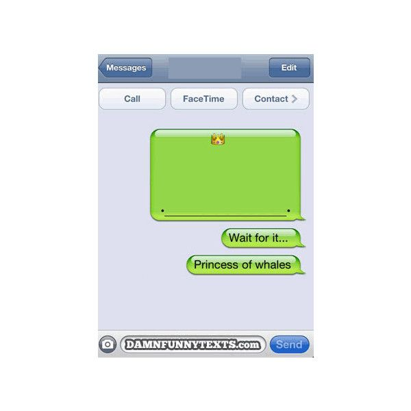 13 Funny Whale Texts ❤ liked on Polyvore featuring pictures, quotes, text, funny, other, filler, phrase and saying