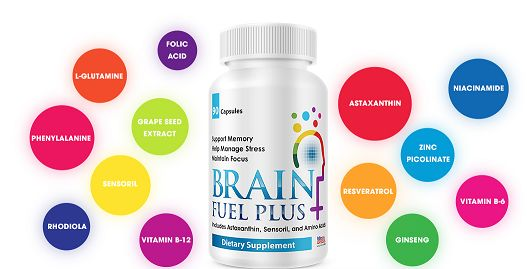 Brain Abundance Review – Brain Fuel and the Brain Abundance System
