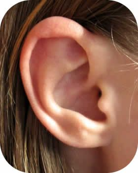 Earlobes. Touch mine and I will kill you. Do not even mention them. And don't touch yours in my presence either. Aaarrrggghhh!