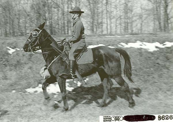 The experimental use of equine goggles against the effects of effects of chlorine and vesicatory gases. Unfortunately, they were not used routinely by the Allies - possibly because they tended to fog up.