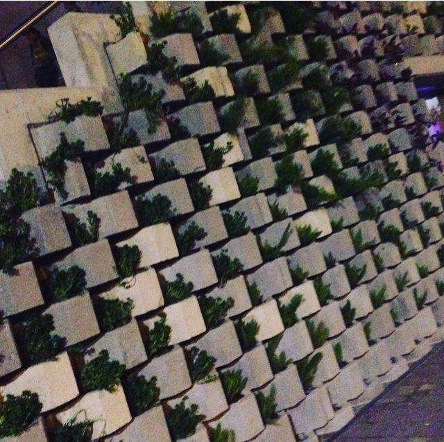 GreenWall / el Rio