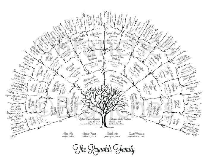 The 25+ best Family tree templates ideas on Pinterest