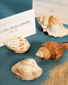 Natural Selections Collection shell design place card holders. http://www.bluerainbowdesign.com/WeddingFavorProduct.aspx?ProductID=PR120808174999KelowSXimenaBRD93265=WEDDI=GROUP=WBEAC=Pinterest