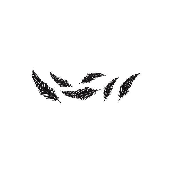 falling feathers png - 564×564