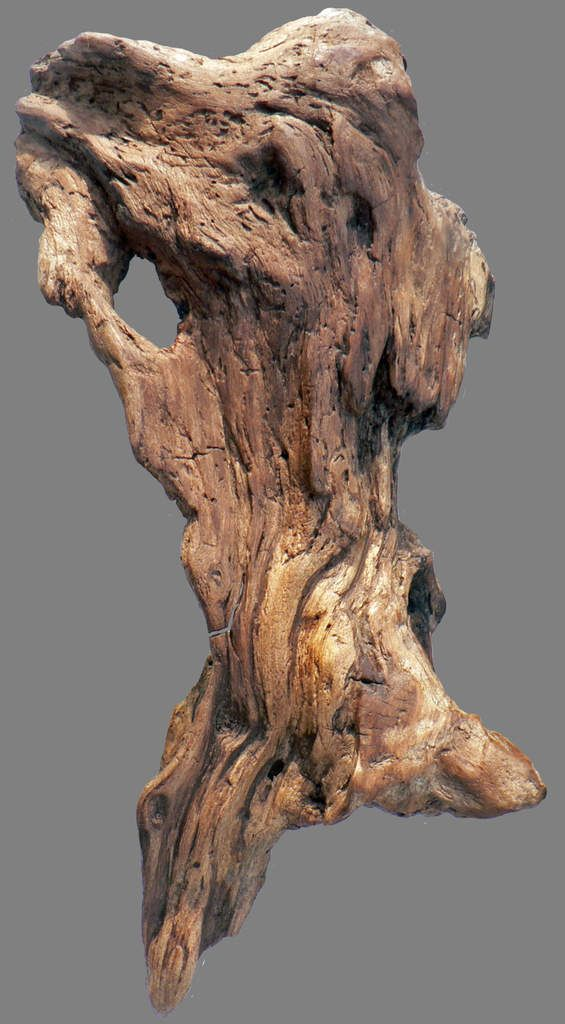 28 best Art sculpture bois images on Pinterest | Art sculptures ...