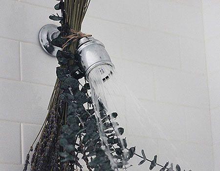 Πώς να κάνετε το σπίτι σας να μυρίζει ωραια! Μυστικά oμορφιάς, υγείας, ευεξίας, ισορροπίας, αρμονίας, Βότανα, μυστικά βότανα, www.mystikavotana.gr, Αιθέρια Έλαια, Λάδια ομορφιάς, σέρουμ σαλιγκαριού, λάδι στρουθοκαμήλου, ελιξίριο σαλιγκαριού, πως θα φτιάξεις τις μεγαλύτερες βλεφαρίδες, συνταγές : www.mystikaomorfias.gr, GoWebShop Platform