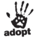 New tumblr site for the shelter pet project.