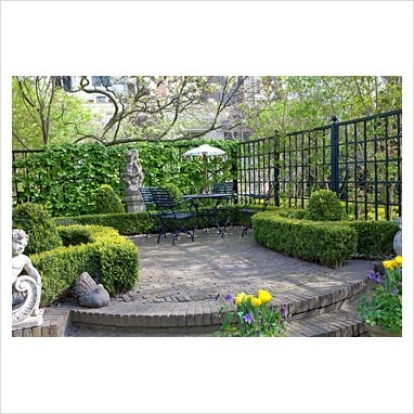 Urban formal garden. metal furniture on patio, clipped  Box hedges , topiary and climbing Hydrangea.
