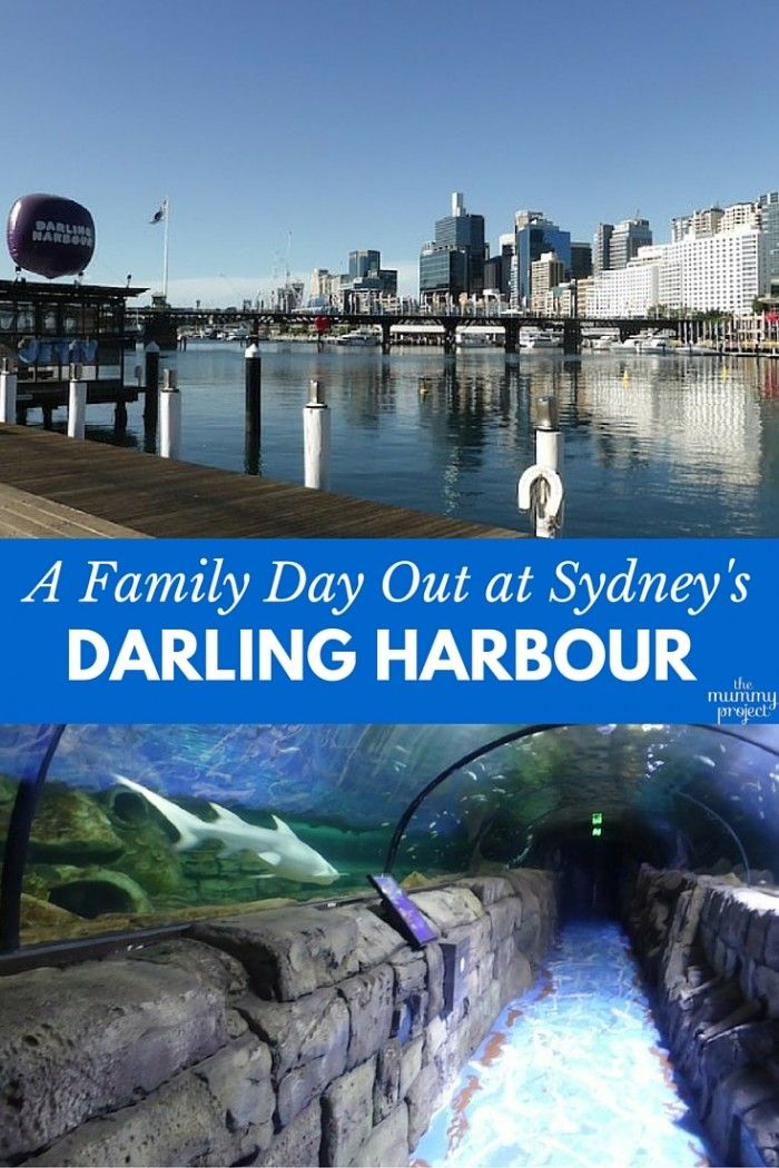It's always a fun family day out in Sydney's Darling Harbour.