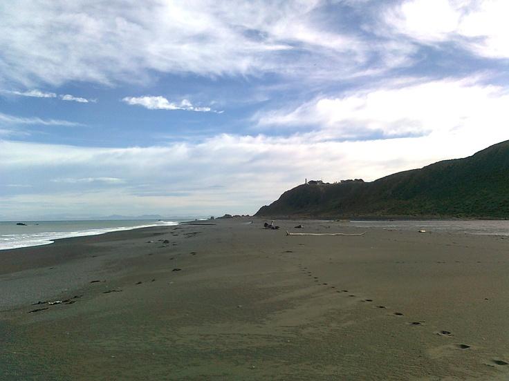 A winter's day at Wainuiomata Beach.