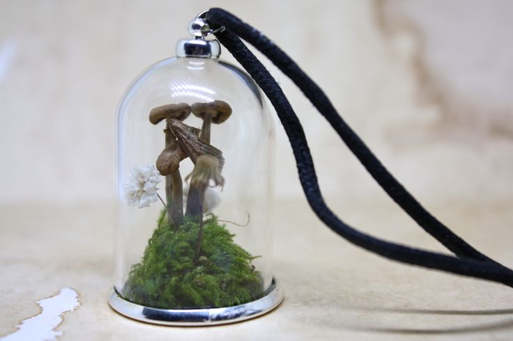 A little world where a moth sits on a mushroom on a hill of moss and babies breath flowers around her. Vial stands at 45mm tall on a black adjustable cord.Please note the vials are glass, they are quiet strong and can withstand light knocks but for long lasting wear please do not wear next to crystal, drop on hard surface, wear in water or leave exposed in direct sunlight for long periods of time as some content may fade in colour.