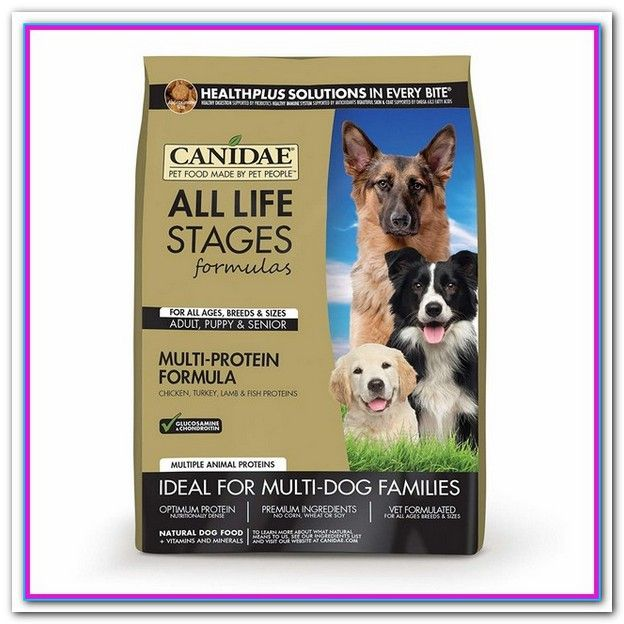 Best Dog Food For Senior Dogs With Allergies Zesty Paws Pure
