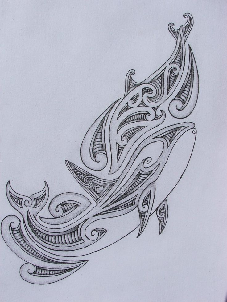 Polynesian Whale Tattoos - Yahoo Image Search Results