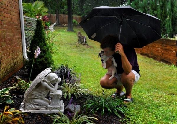 Backyard Pet Memory Garden Outdoor Spaces Pinterest