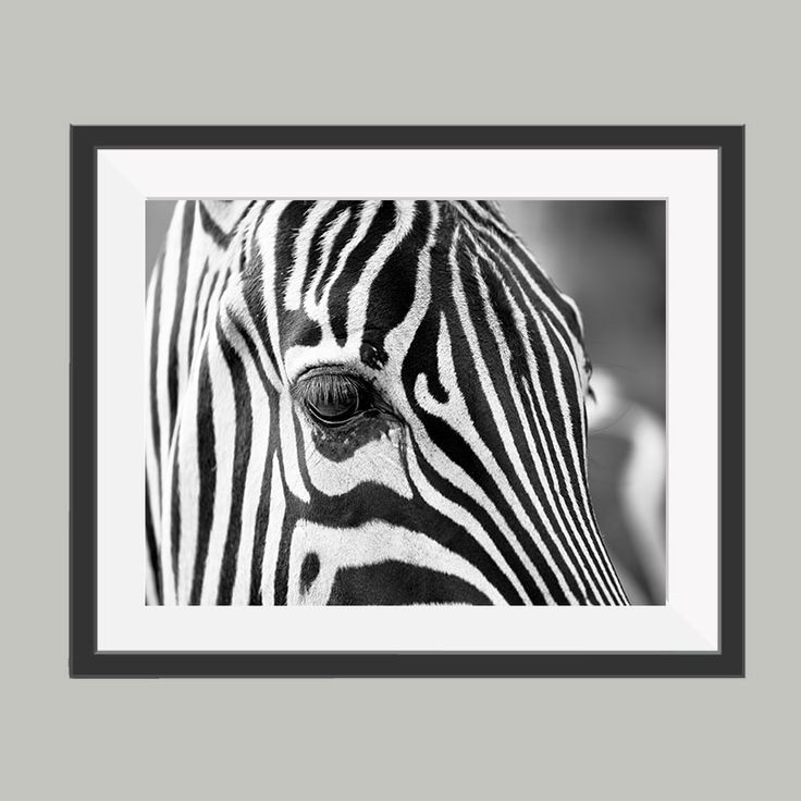 14 best zwart wit posters images on Pinterest | Om, Attraction and ...