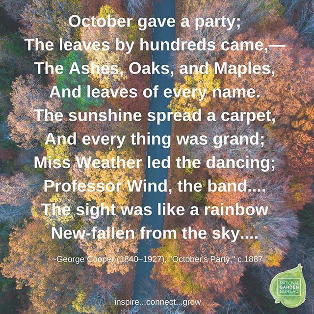 poem in october Lyrics to 'poem in october' by richard burton it was my thirtieth year to heaven / woke to my hearing from harbour and neighbour wood / and the mussel pooled and the heron / priested shore.