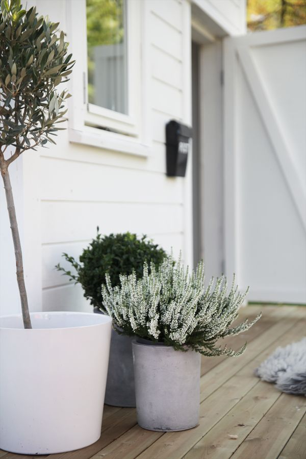 Lovely, minimalistic plants in white and grey pots near the entrance door. (Source: Bo Bedre, Elisabeth Heier http://elisabethheier.no) (Outdoor Wood Terrace)