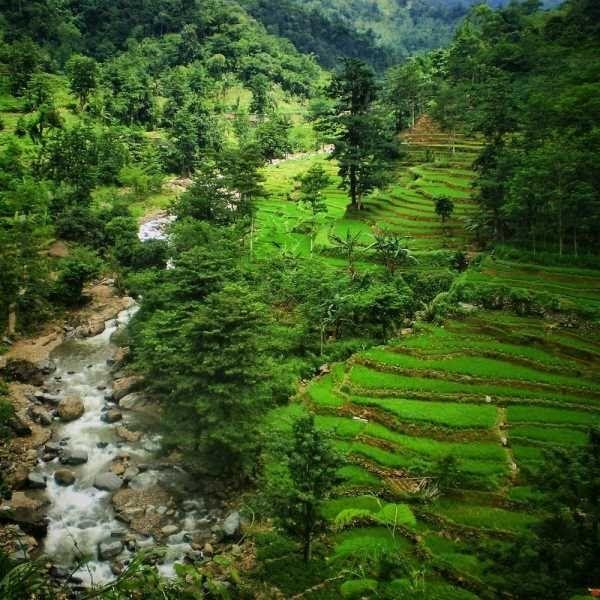 Pemandangan Alam Indah Di Indonesia 4 Panorama Alam Indah Nan Menawan Yang Ada Di Indonesia Kumpulan Tempat Wisata Terinda Di 2020 Pemandangan Alam Gambar Bergerak
