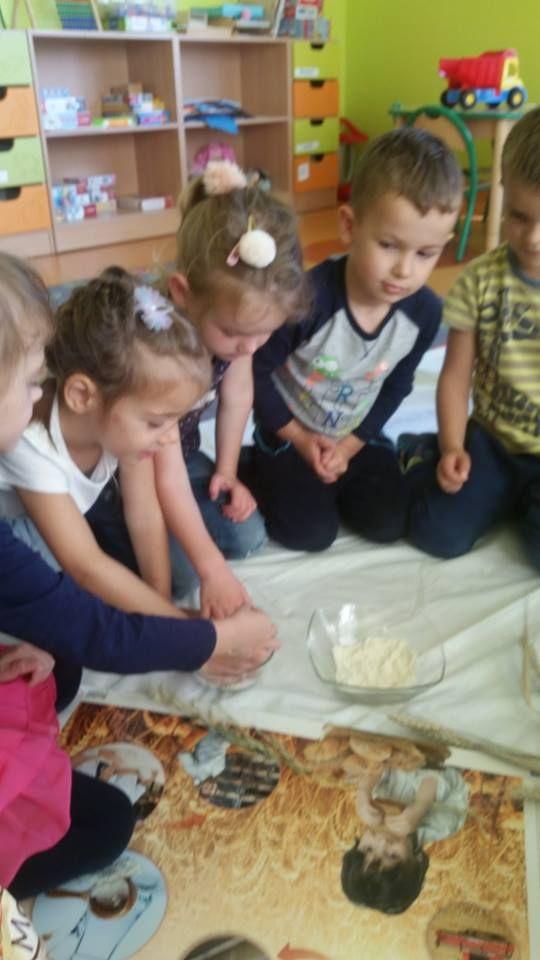 skąd się bierze chleb? :) www.przedszkoleswiatdziecka.edu.pl