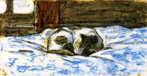 Cats Sleeping Bed Drawing