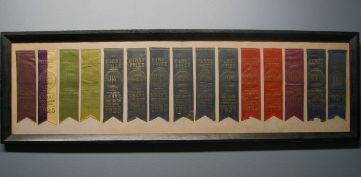 How To Display Dog Show Ribbons