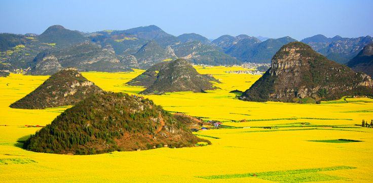 "Luoping, China The sprawling farmlands of this dramatic, mountainous county in Eastern China become a ""golden sea"" when canola blooms are in season."