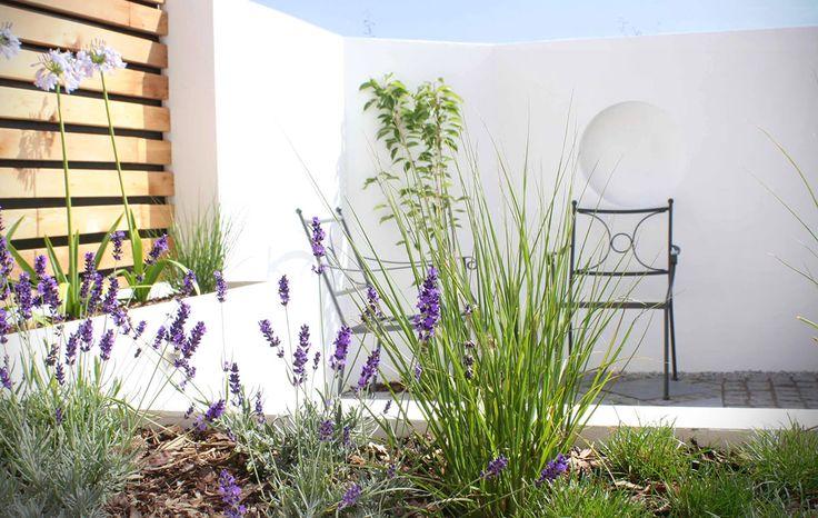 Fantastic Modern Garden