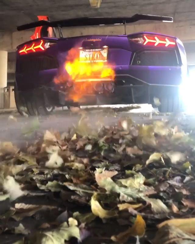 Lamborghini Aventador   – Cool
